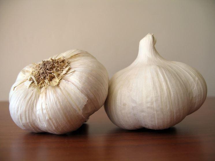 spicchi d'aglio su un tavolo