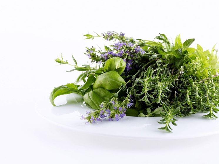 Composizione di erbe aromatiche.