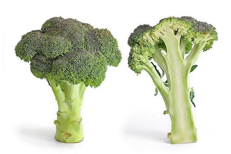 Broccolo e sua sezione