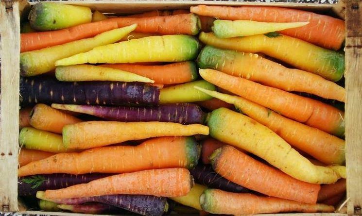 Le carote si Polignano