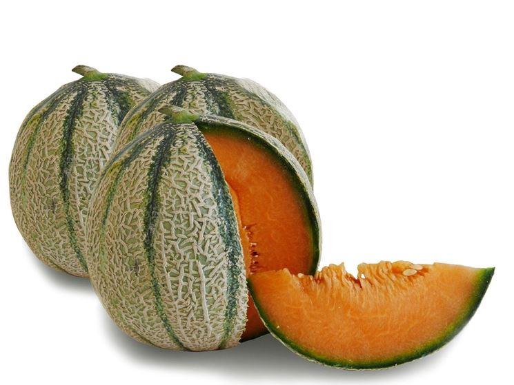 Coltivare meloni semina