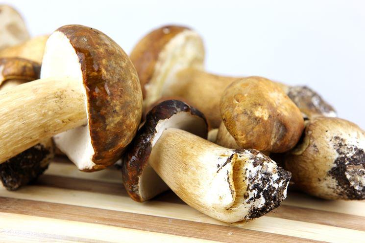 Differenze tra porcini e champignon