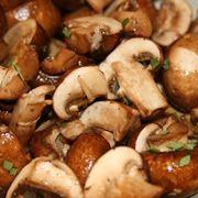 coltivazione funghi porcini