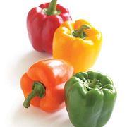 Le quattro variet� di peperoni