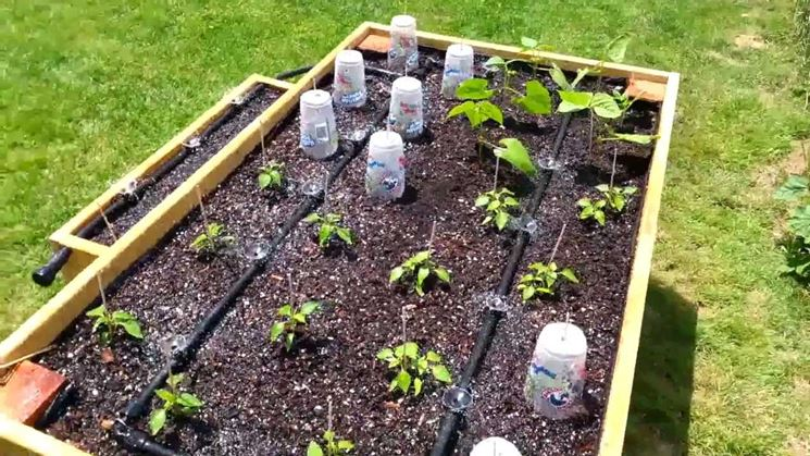 irrigatori orto