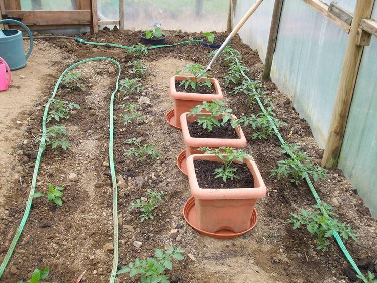 Impianto irrigazionew