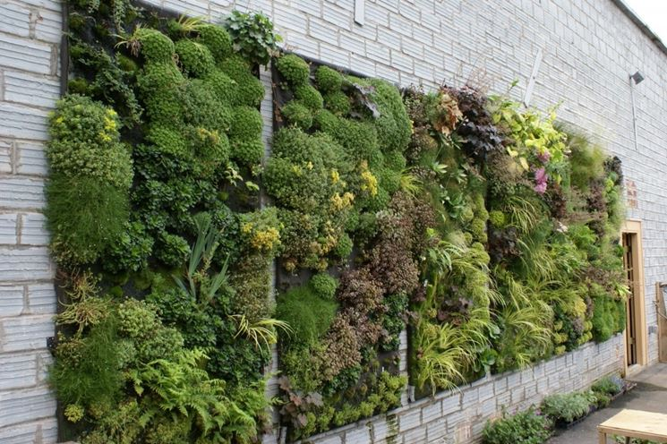 Coltivazione orti verticali