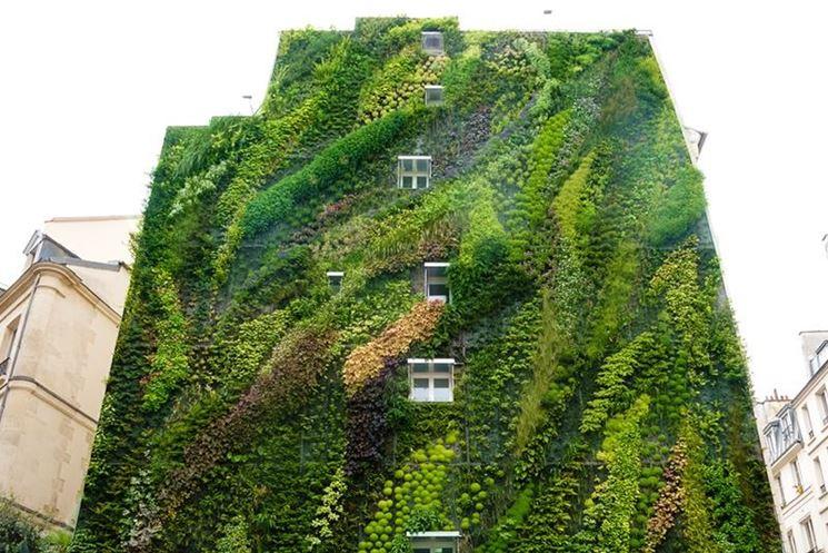 Giardino verticale facciata casa