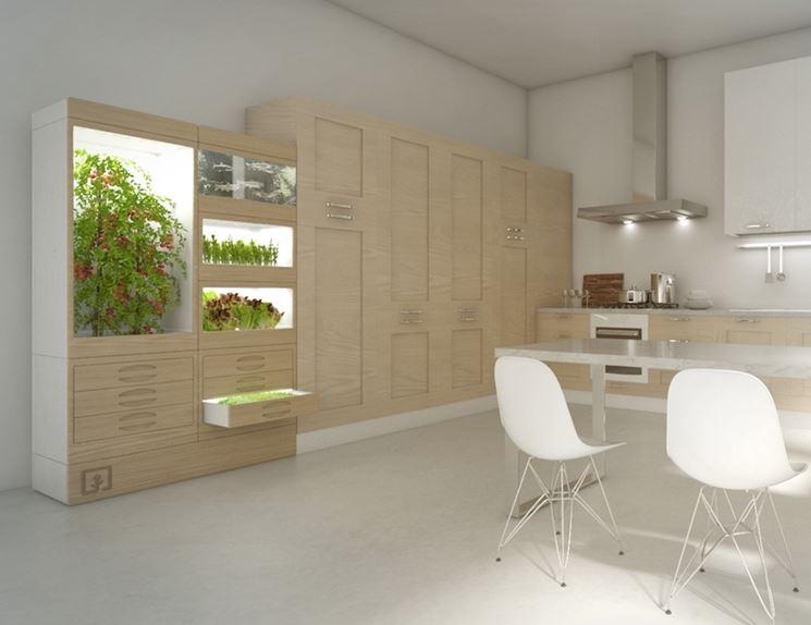 orto in cucina