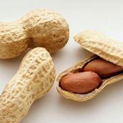 Le origini della pianta di arachidi