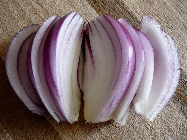 spicchi di cipolla