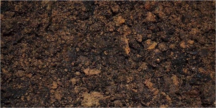 Terreno argilla espansa