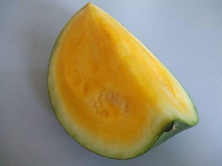 Cocomero di colore giallo