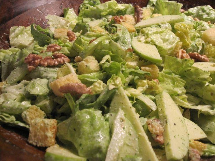 insalata di lattuga