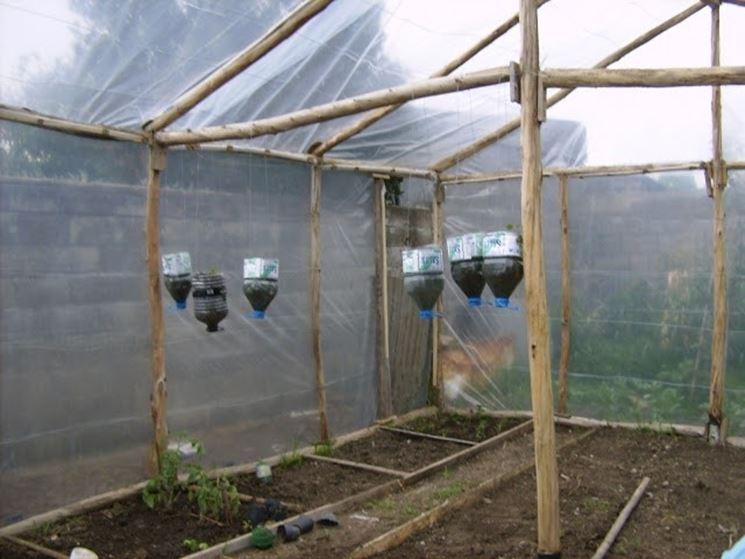 Serra fai da te ortaggi serra fai da te orto for Costruire serra legno