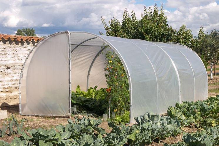 Serre da orto ortaggi caratteristiche delle serre da orto for Archi per serre da orto