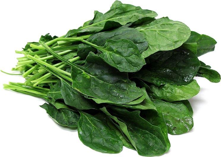 spinaci raccolto