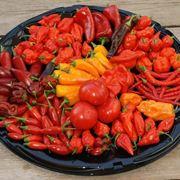 Piatto di peperoncini di varia forma e colore