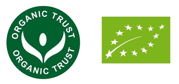 A destra, il logo ufficiale dal 2010