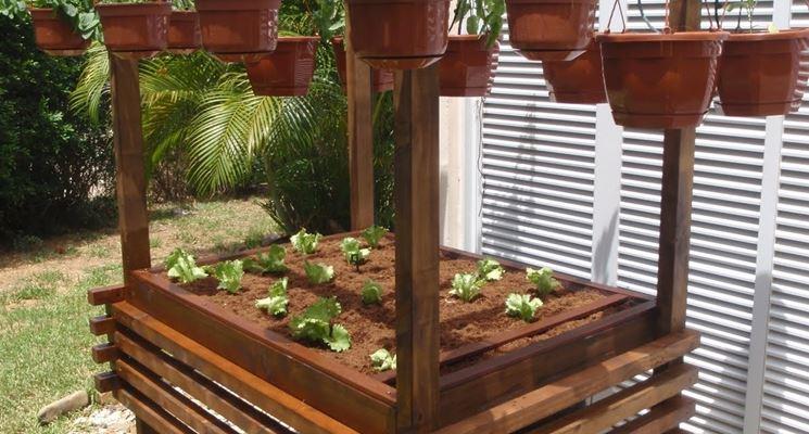 Struttura per la coltivazione di leguminose.