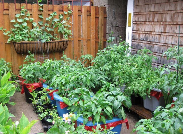 vasi per coltivare gli ortaggi
