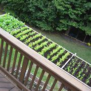 orto in balcone