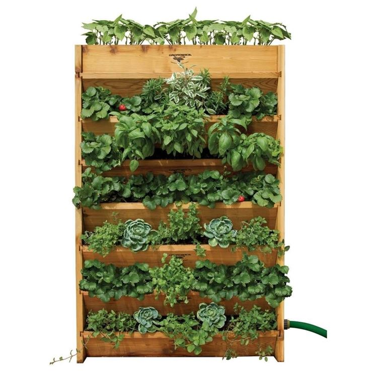 Supporto in legno per orto verticale