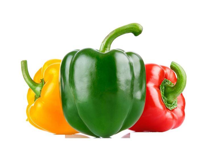 peperoni fondo bianco