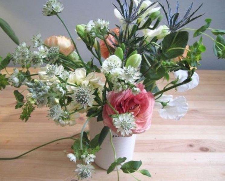 Composizioni Piante Grasse Fai Da Te : Composizioni fiori secchi fai da te