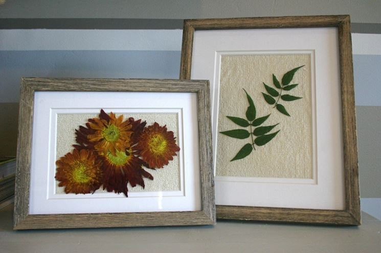 Quadri realizzati con fiori e foglie essiccati