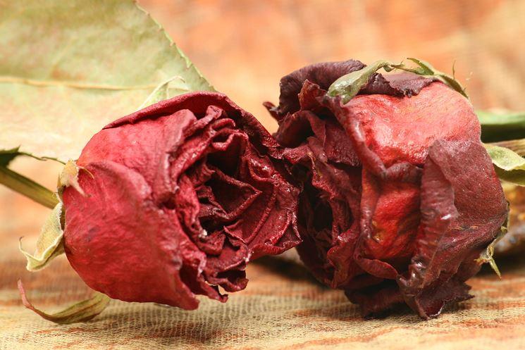 Un esempio di bouquet realizzato con fiori secchi
