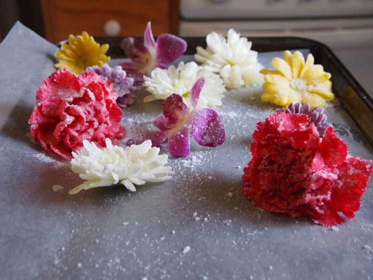 fiori su teglia
