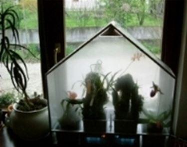 Una tipica serra per orchidee