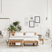 piante camera da letto
