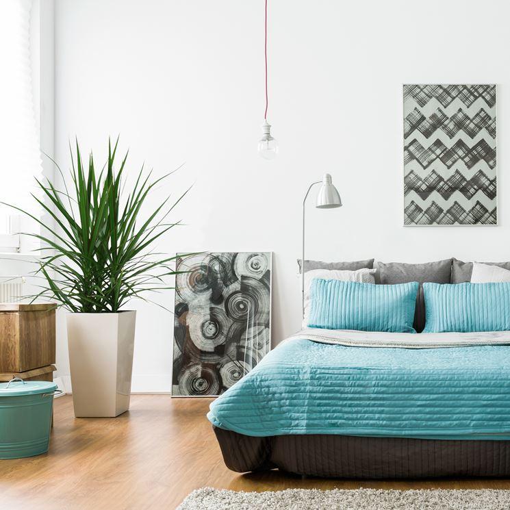 5 Piante per la camera da letto - piante appartamento ...