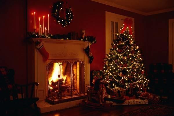 Immagini Abete Di Natale.Abete Di Natale Piante Appartamento Abete Di Natale