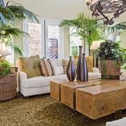 Salotto piante appartamento