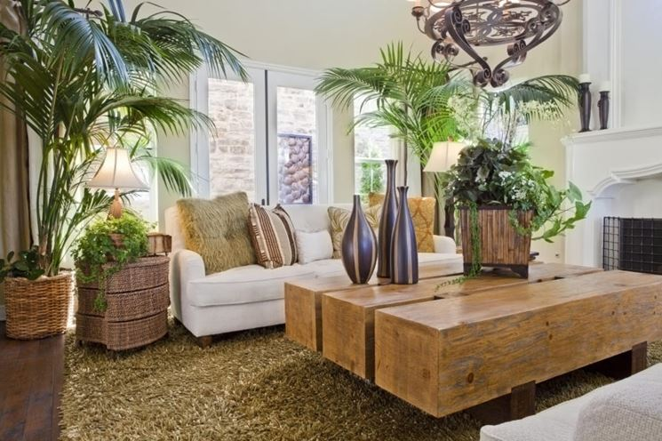 Piante d 39 appartamento piante appartamento tipologie for Pianta da salotto