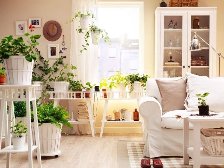 Casa splendidamente arredata con piante