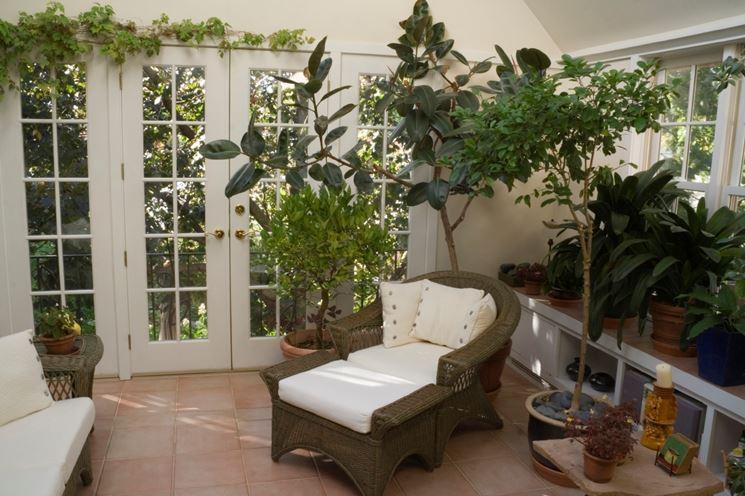 Salotto arredato piante appartamento