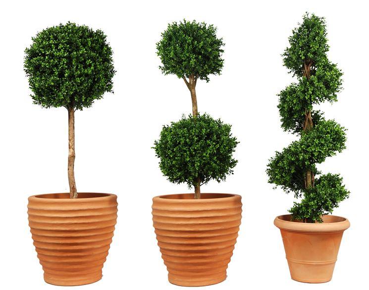 Una pianta finta al contempo particolare e realistica
