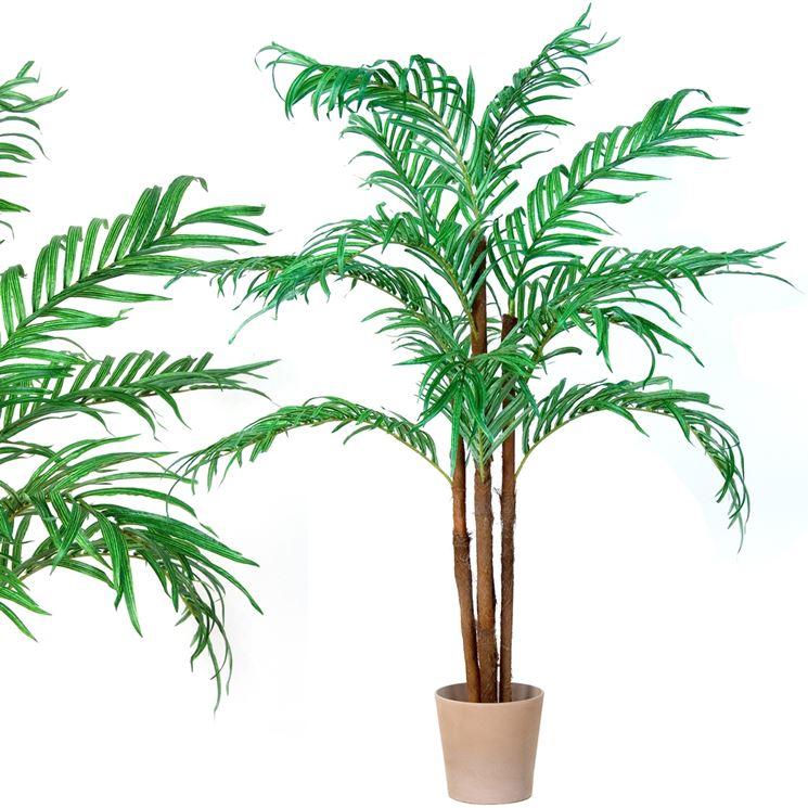 Un esemplare di pianta di cocco in plastica