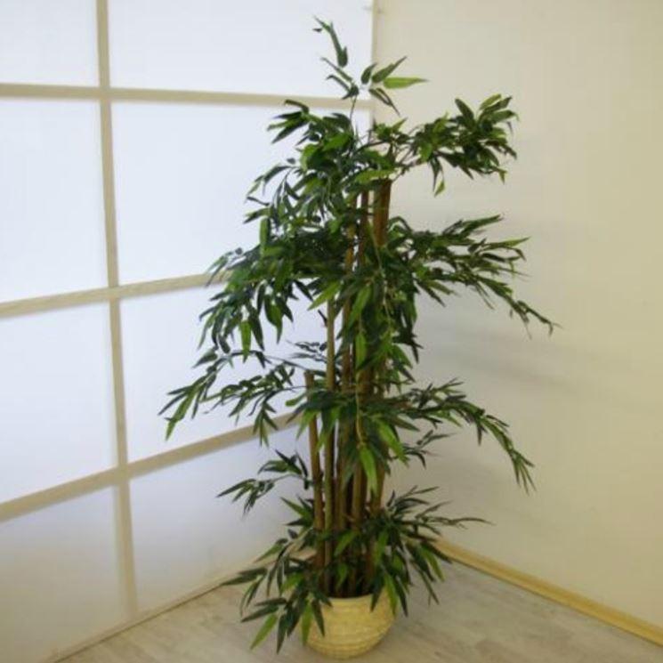 Piante artificiali - Piante finte - Caratteristiche delle piante artificiali