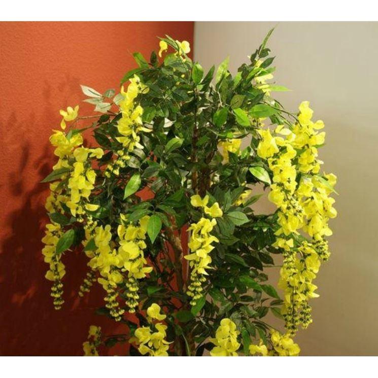 Piante artificiali piante finte caratteristiche delle for Piante appartamento buio