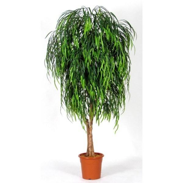 Piante finte da arredo piante finte arredare con le for Piante da interno alte