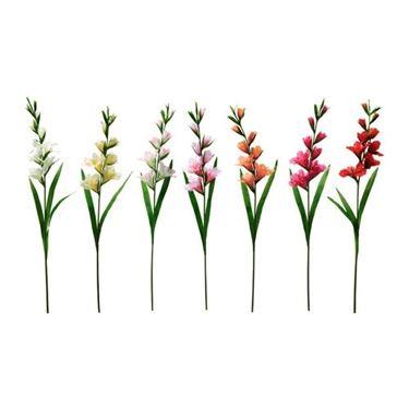 Graziosi Gladioli in sette varianti di colore.