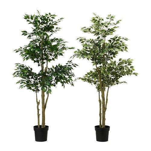 Piante finte ikea piante finte ikea piante finte for Plantas de interior ikea