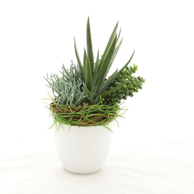 piante grasse finte piante finte piante grasse finte On piante sintetiche