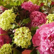 vasi con fiori finti