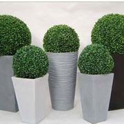 piante finte da interno